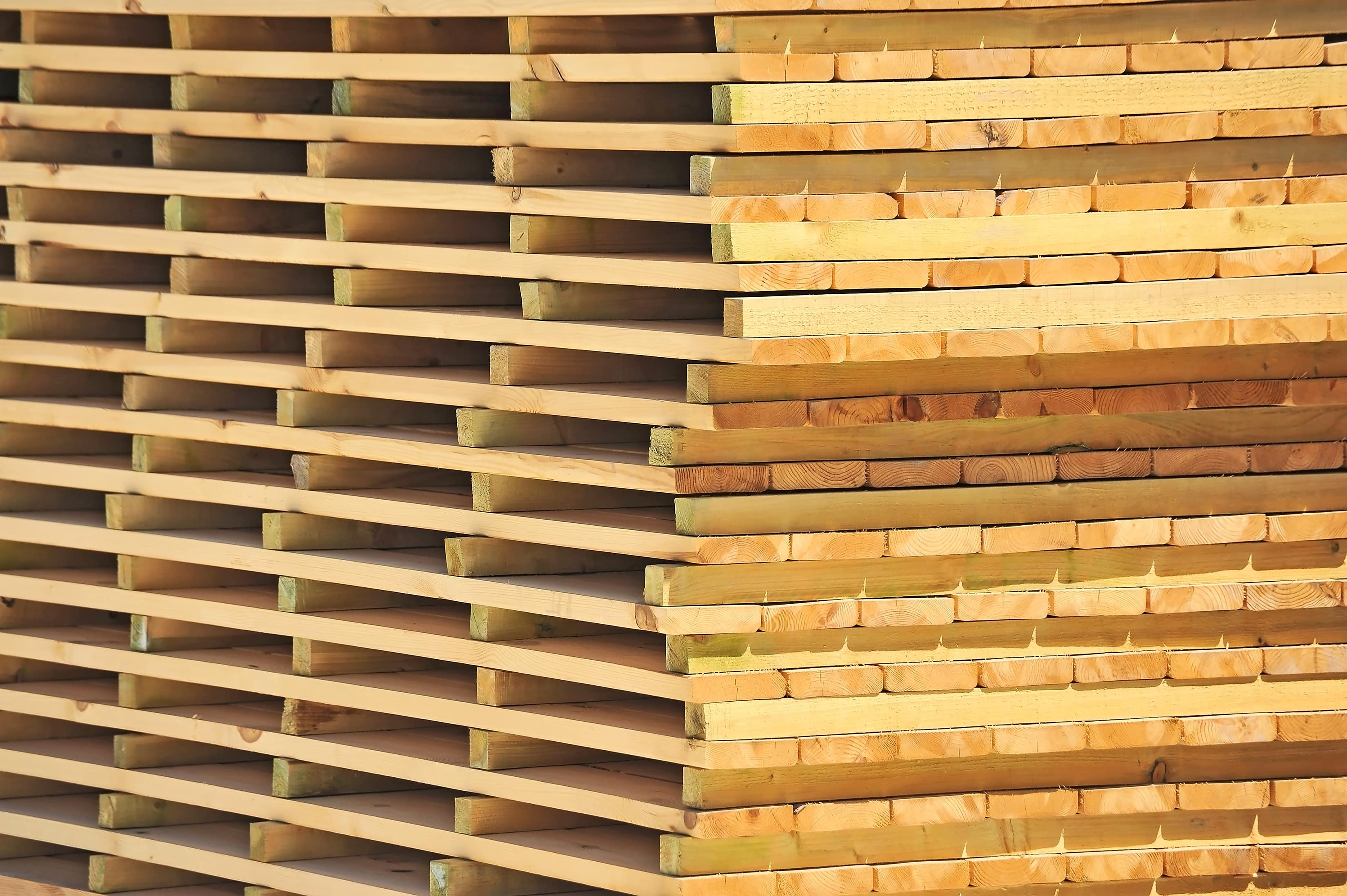We plan to start trading dried timber and provide wood drying services