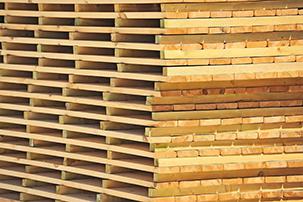 Planuojame pradėti prekiauti džiovinta mediena bei teikti medienos džiovinimo paslaugas