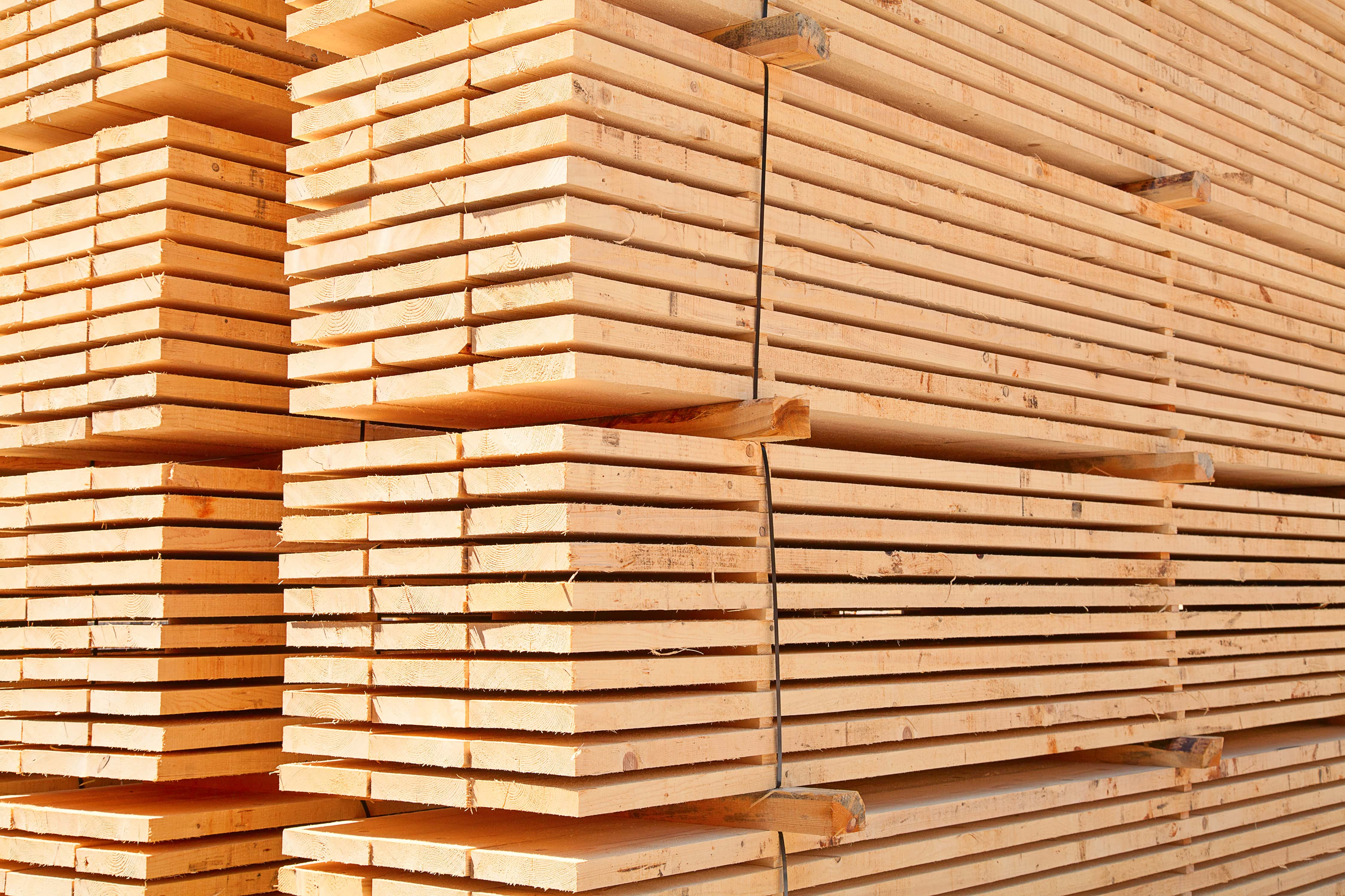 Construction timber